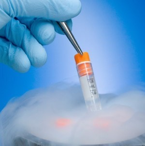 vitrification - Test Tube Baby Treatmentvitrification